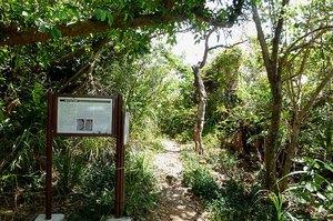 藪地洞穴遺跡Jweb.jpg